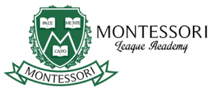 The Montessori Ivy League Academy