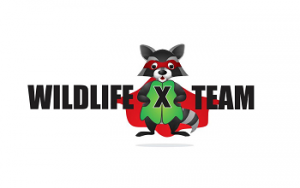 Wildlife X Team