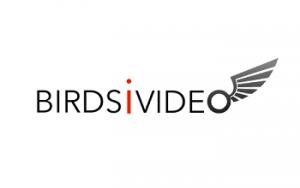 BirdsiVideo